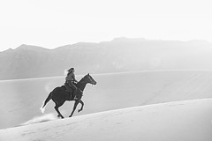 Barrel racer Nicky Dole on Rogue, AKA Red Carpet, at White Sands (Mitch Tillison Photography) Tags: ricochetperformancehorses nickydole rogue gallop galloping whitesands horse rider barrelracer cowboy cowgirl western equine photography photo mitchtillison nikon d810 black white bw monochrome
