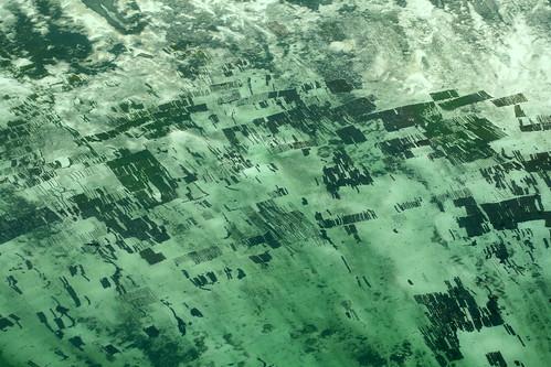 aerial Maziwa Ngombe 2