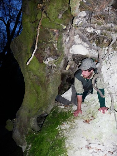 will-in-tree-hole-before-east-meon