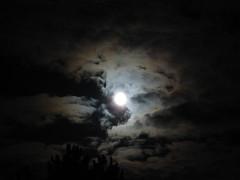 Cagnotte (40), nuit de pleine lune. (Marie-Hélène Cingal) Tags: sky moon france southwest clouds lune luna fullmoon ciel cielo nubes 40 nuages landes pleinelune sudouest aquitaine cagnotte paysdorthe yourcountry