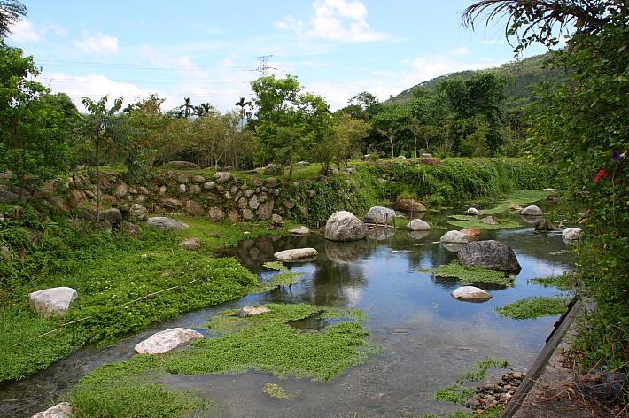 馬太鞍濕地、部落058