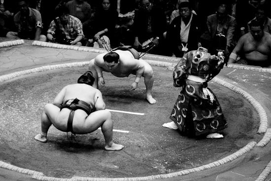 sumo_wrestling_6015