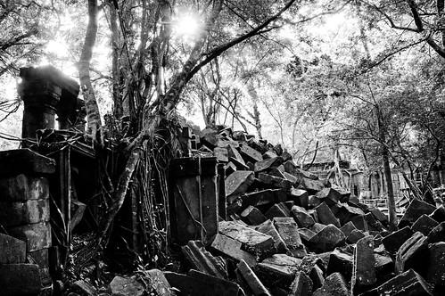 Angkor 11