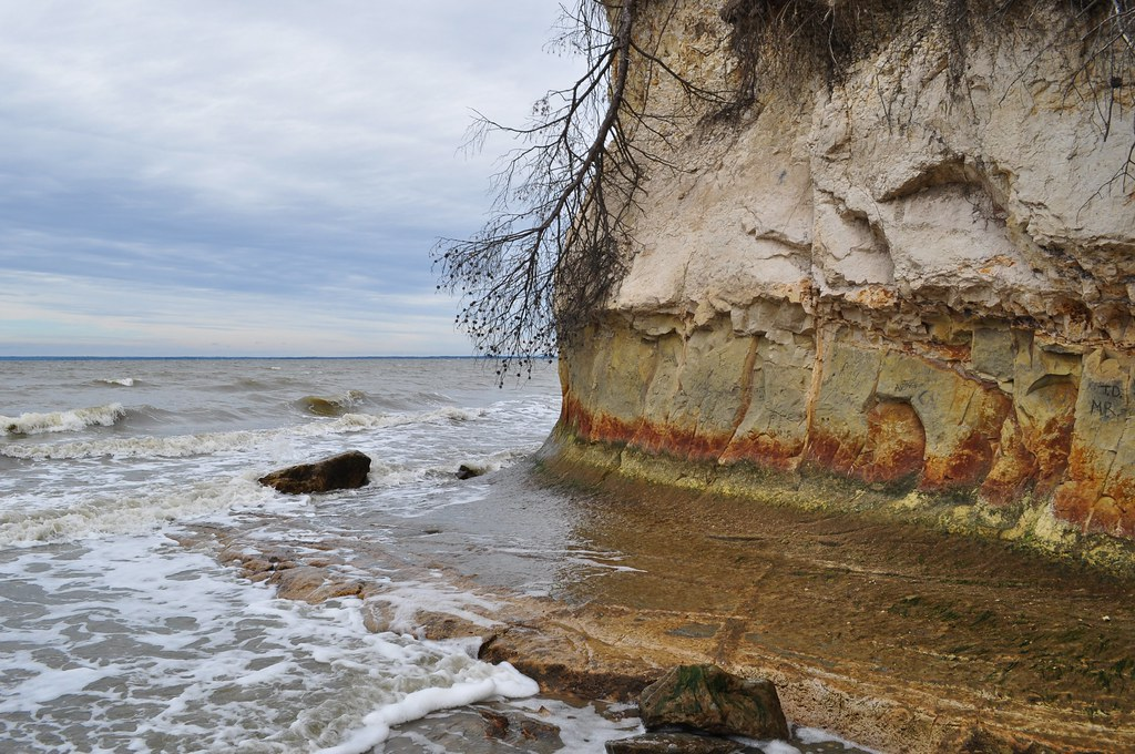 Fossil Beach Cliffs 3