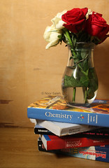 nothing else .. ! (AlQataria) Tags: chemistry math physics biology grade12       medgroup     alqataria   noorsaleh      p