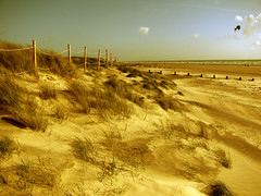 Sand Dunes at West Wittering beach, Sussex (wanderer_by_trade) Tags: uk autumn sea england kite beach grass sussex coast sand scenery dunes windy kites coastal beachhuts kitesurfers windsurfers westwittering
