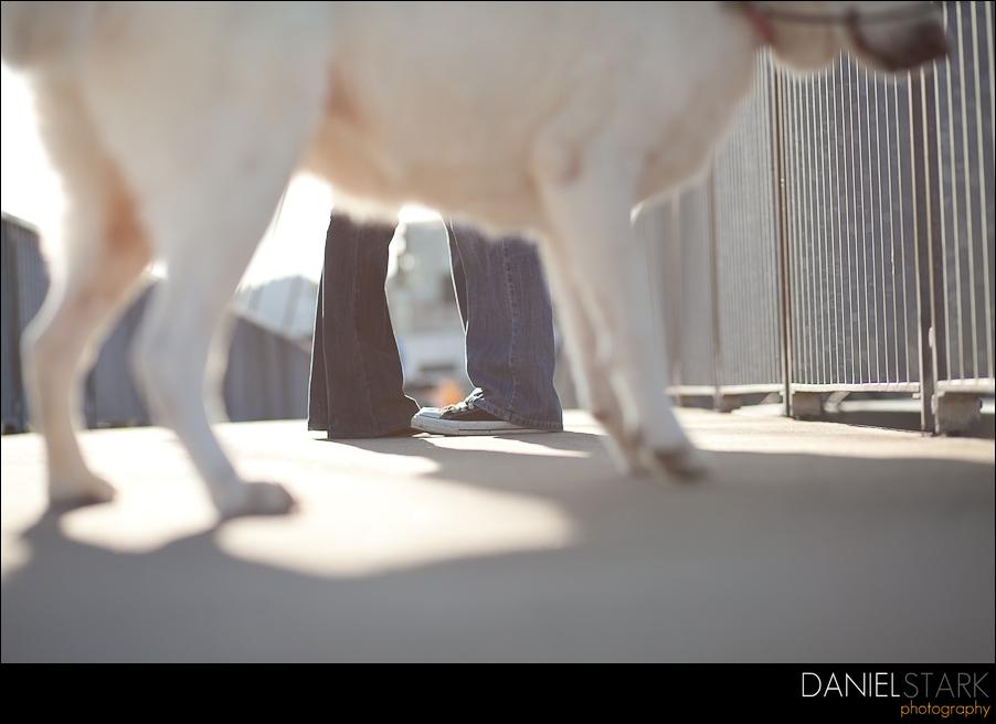 daniel stark photography-12
