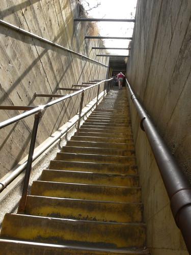 99 Steps?!?!?!