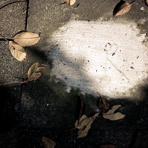 Heart Cement