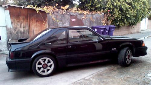 My 5.0 Mustang #6
