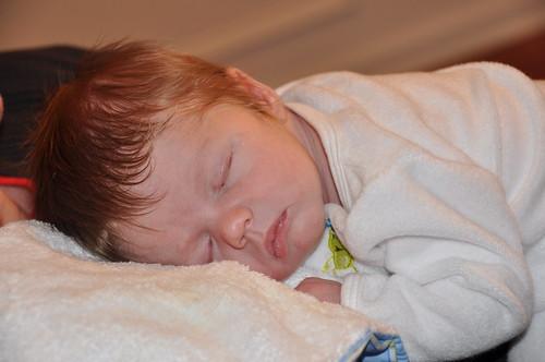 Bentley Sleeping
