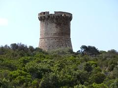 Montée à la tour de Capu Neru : la tour