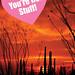 Happy Valentine's Day! Desert Valentine