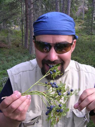 Miškai pilni uogų ir grybų