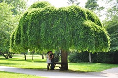 Kaks (anuwintschalek) Tags: park summer tree green love austria hug couple sommer paar july grn puu 2009 baum niedersterreich stadtpark suvi umarmung wienerneustadt roheline embus nikond90 18105vr paarike