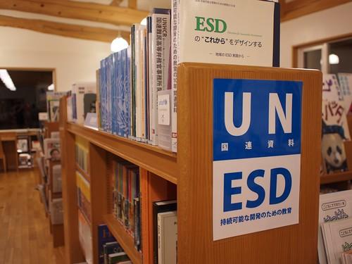 UN & ESD