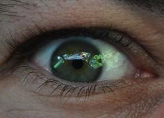 Some say...I only got eyes for cars... (CitroenAZU) Tags: iris eye eyes skin interior interieur spiegel citroen oeil yeux vel fisheye vision deux 2cv aug ogen augen ente pupil besteleend pattes refelction oog weerspiegeling azu wimper ak400 deuche