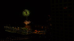 palm tree and grass fireworks 2009 Aug 01 - 6005 - Chicago (doug.siefken) Tags: light summer usa lake chicago tree art water grass night illinois perfect exposure time michigan doug indiana palm nite available imho navypierfireworks siefken dougsiefken