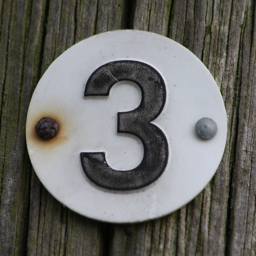 number 3 by Leo Reynolds.