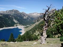 Grand Raid des Pyrenees Ultra 2009 (919)