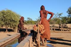 (rurukina) Tags: africa people african culture tribal safari afrika tribe ethnic namibia tribo himba angola afrique ethnology tribu namibie tribus ethnie   muhimbas muhimba