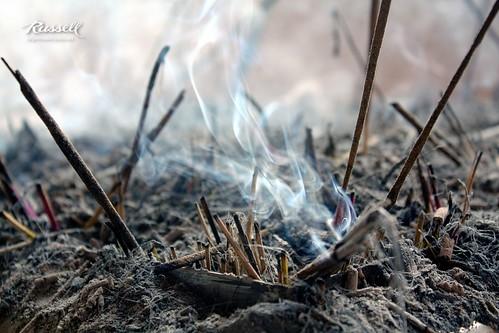 Burning Rose Sticks (by Russell John)