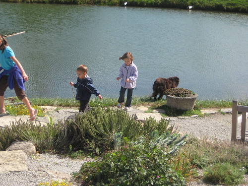 The children with the arborteum's resident collie
