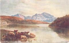 Isle Of Bute, Loch Fad