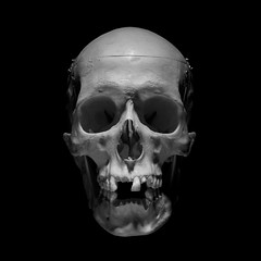 Dead Guy (Meus McIntoshi) Tags: digital zeiss skull 100