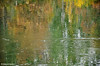 Happy for our River! (Hamzeh Karbasi) Tags: reflection water river persian iran persia drought iranian ایران rood esfahan isfahan اصفهان zayandeh رود آب roud zayandehroud زاینده hamzeh zayandehrood zayanderoud karbasi hamzehkarbasi حمزه کرباسی زایندهرود بازتاب حمزهکرباسی خشکسالی