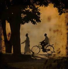 Travelling men (halifaxlight) Tags: africa lake tree men texture bike bicycle silhouette walking square tanzania cycling mwanza lakevictoria greatphoto abigfave specialpicture artofimages thecelebrationoflife bestcapturesaoi elitegalleryaoi