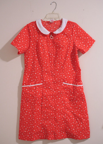 redhousedress1