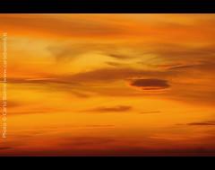 Sky is ..... orange