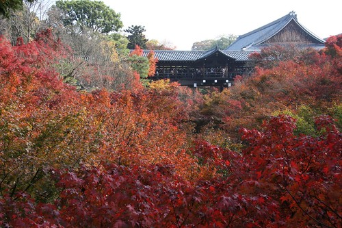 Kyoto is in red.