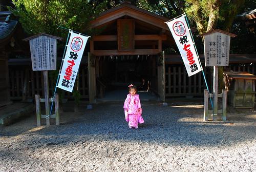 7-5-3 at munakata taisha