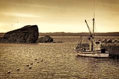Harbour View (Clyde Barrett) Tags: ocean sepia newfoundland boat fishing dock harbour gulls wharf nl nfld trinitybay heartsdesire bej clydebarrett