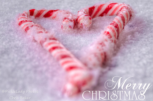 Candy Cane Christmas-5213