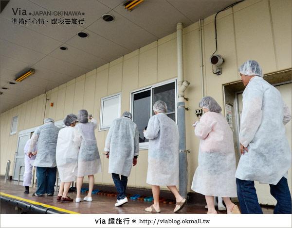 【沖繩景點】書上沒教你玩的琉球!via玩琉球《第二天》10