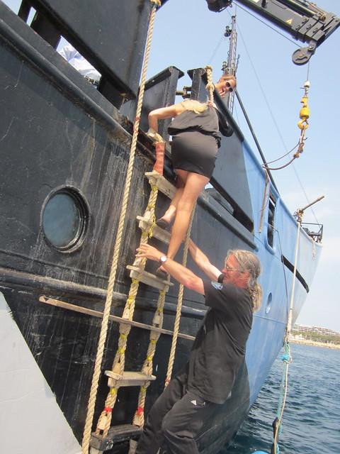 Confessions of an Eco Terrorist, Jennifer Lexon, Peter Jay Brown, Sea Shepherd, Steve Erwin, Cannes