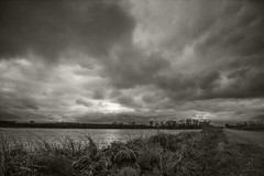 A Blustery raw afternoon in Kansas (pdecell) Tags: kansas lawrence winter cold bakerwetlands clouds