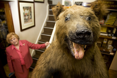 Bruno The Bear - tobacco shop