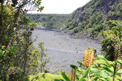A lot of vegetation on the crater floor Photo