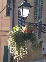 Light and lamp (maryateresa2001) Tags: light italy lamp mtd controluce sanremo lampione liguri maryateresa fiorierasospesa