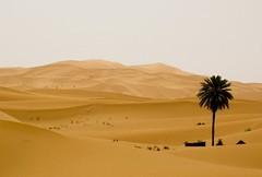 MERZOUGA IN MOROCCO-2 (photojordi) Tags: light paisajes luz sport canon de photography eos photo amazing sand foto y offroad 4x4 photos dunes quad lo best adventure arena ixus mo