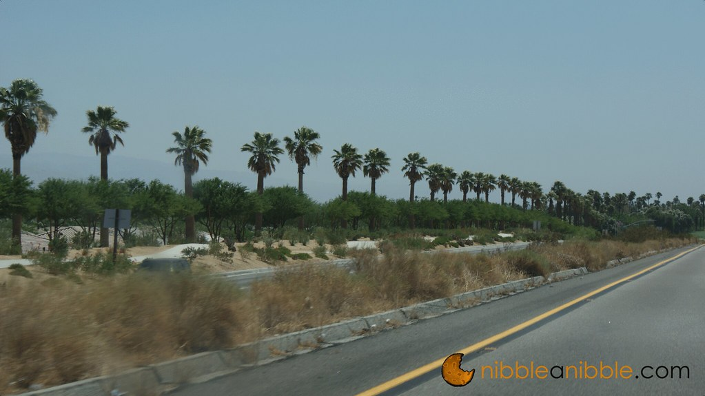Road to Palm Springs