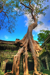 Ta Prohm Temple, Angkor, Cambodia (Johnny Siahaan) Tags: sunset sky nature water beautiful sunrise photo amazing nikon asia cambodia photos buddha angkorwat stockphotos siemreap angkor hindu bestshot stockphotography beautifullandscape traveltravel photostock sellphotos interestinglandscape fiveprime johnnysiahaan