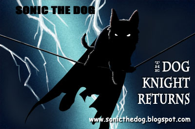 The Dog Knight Returns