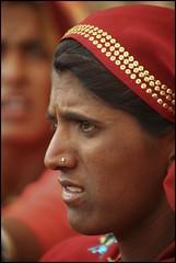 Dont like it? (Hema Narayanan) Tags: pushkar rajasthan camelfair thardesert pushkarcattlefair pushkarfair2009 pushkarfestivalof2009 cattlefairatpushkar