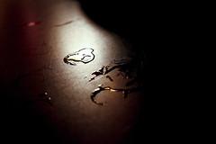 Ambiente-Alberto_Lizaralde-BlankPaper-TannedTin008 (Blank Paper / Tanned Tin) Tags: madrid 2009 tannedtin clamores blankpaper albertolizaralde