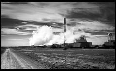 Powered by Coal (S_L_Reflex) Tags: plant photoshop canon power coal 2470l orton lightroom cs4 50d